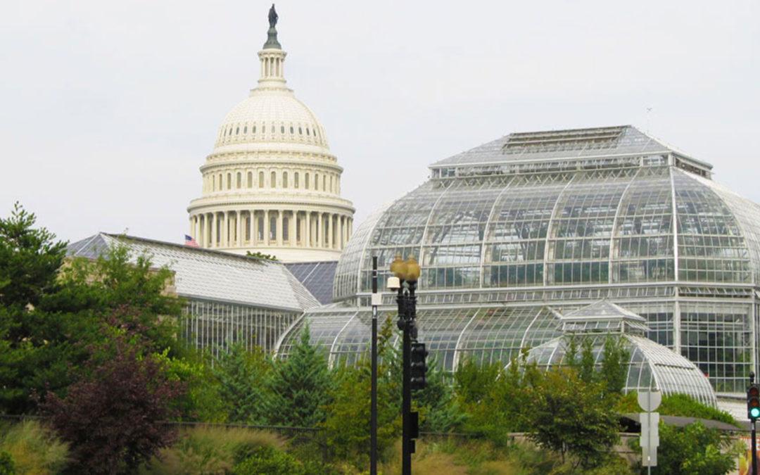 United States Botanic Garden Conservatory Renovation