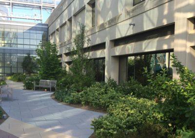 Nemours/Alfred I. duPont Hospital for Children Rooftop Garden