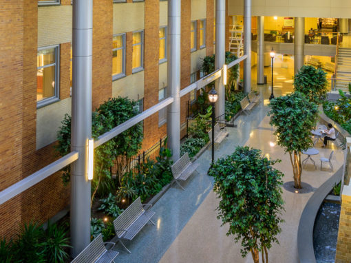 Christiana Care  – Wilmington Hospital  – Atrium