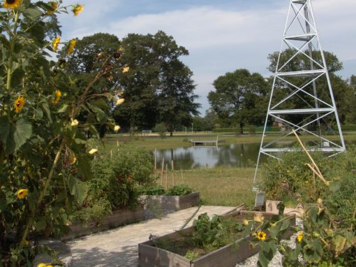 St. Andrew's Organic Garden